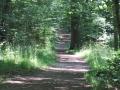 Jacobsweg durch den Burgstall